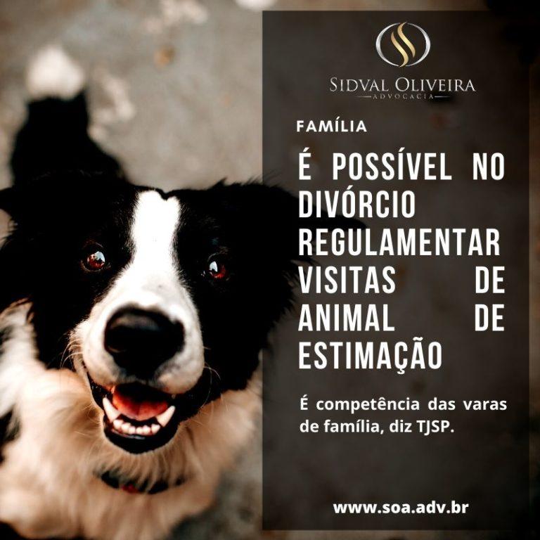Read more about the article Para o TJSP é possível homologar no divorcio cláusula de regulamentação de visitas de animal de estimação