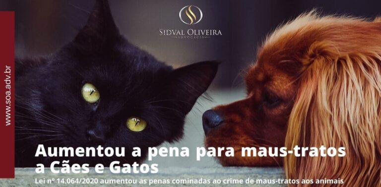 Read more about the article Aumentou a pena para maus-tratos e Cães e Animais.