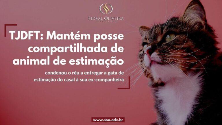 Read more about the article TJDFT: Mantém posse compartilhada de animal de estimação